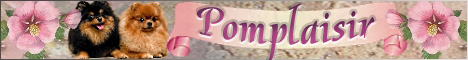 Питомник немецких (миниатюрных) шпицев Pomplaisir